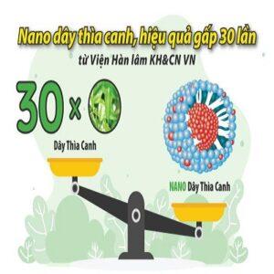 Việt Nam bào chế thành công Nano Dây thìa canh, tăng hiệu quả gấp 30 lần