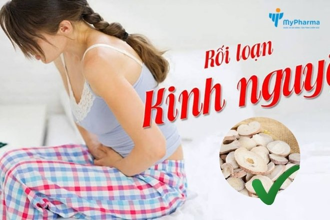 Bạch thược giúp điều trị rối loạn kinh nguyệt ở phụ nữ